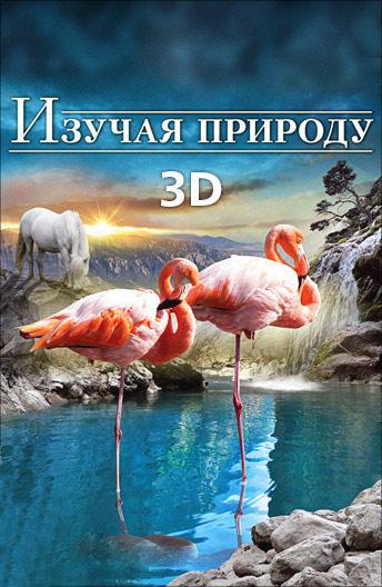 Изучая природу 3D