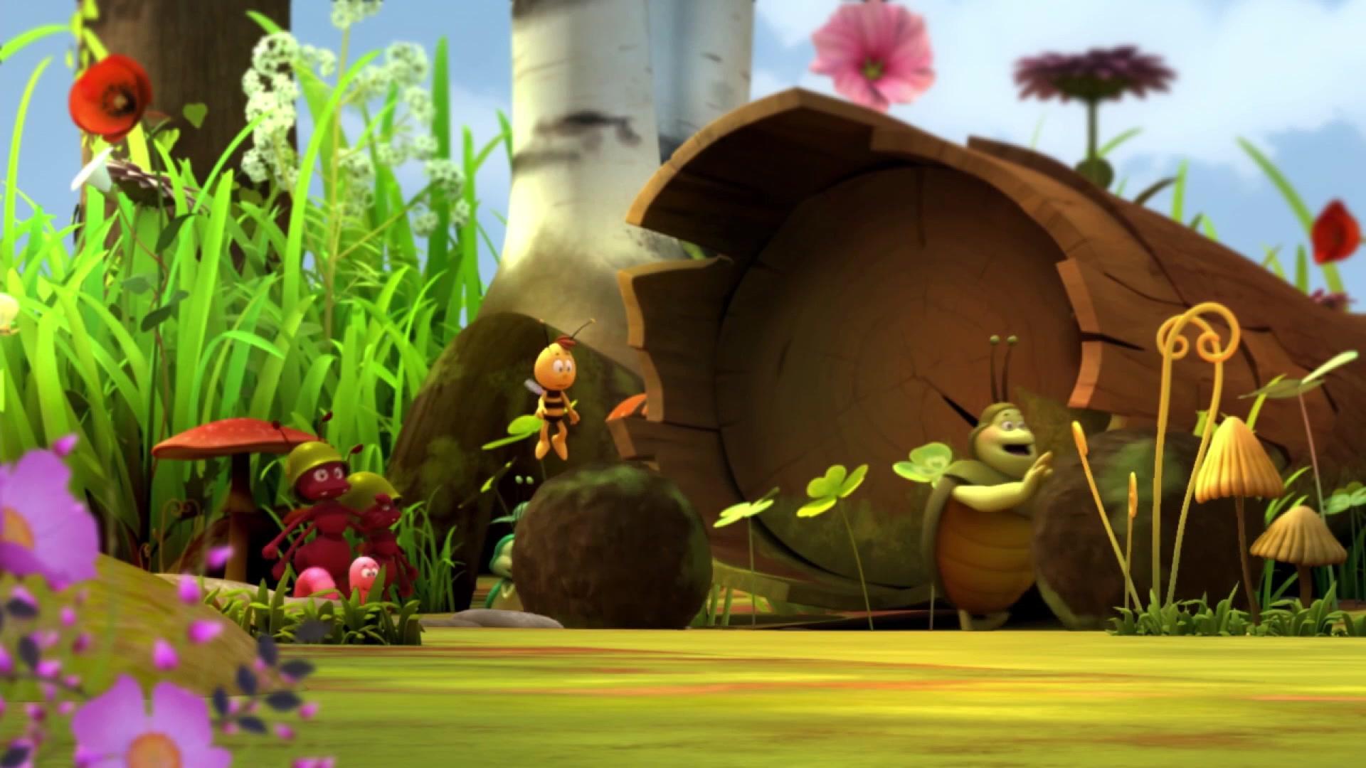 Пчелка Майя: Новые приключения / Справедливое решение