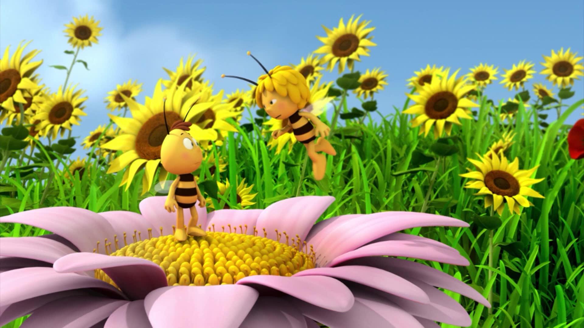 Пчелка Майя: Новые приключения / Мысли вслух
