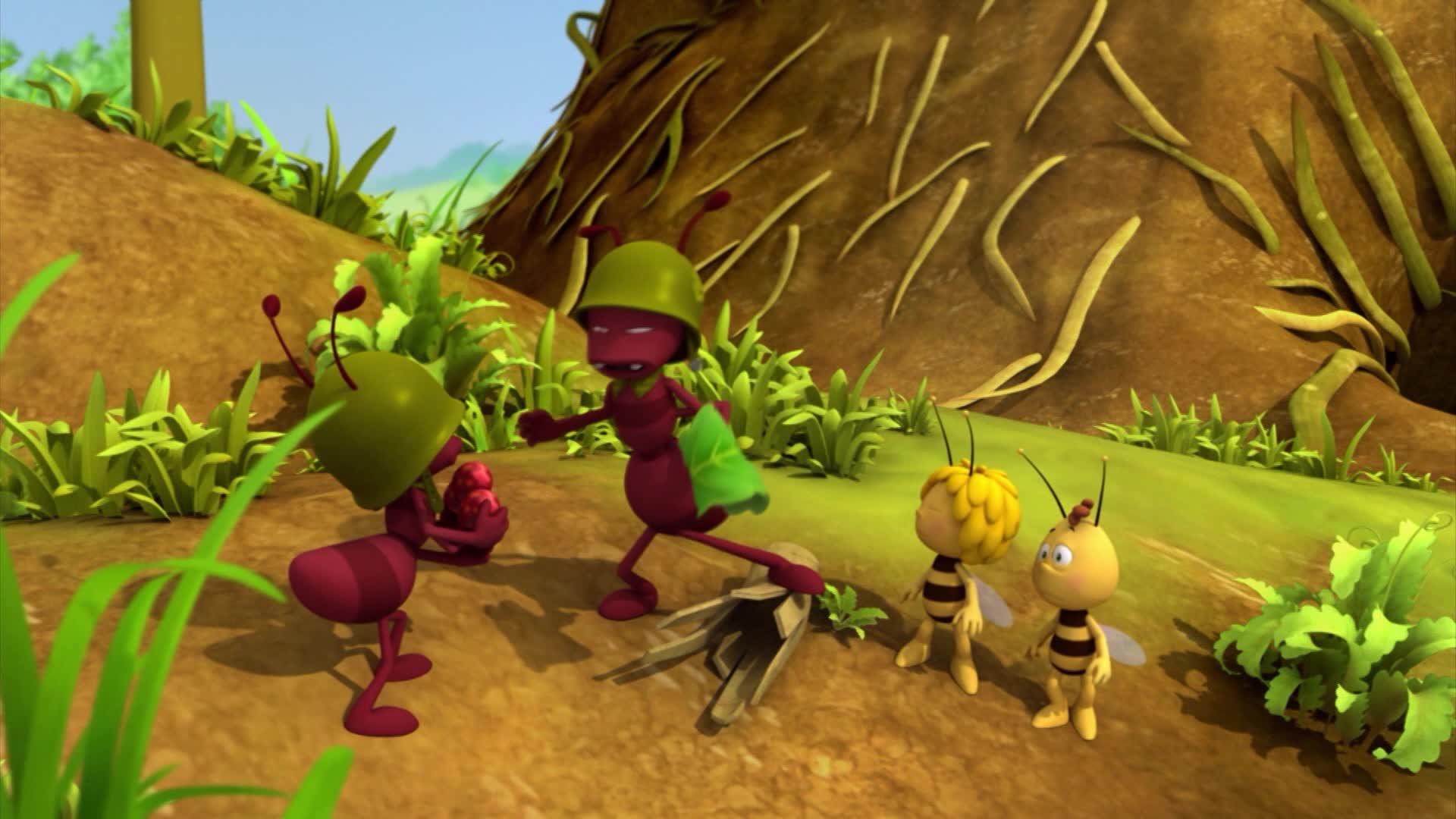 Пчелка Майя: Новые приключения / Командир Майя