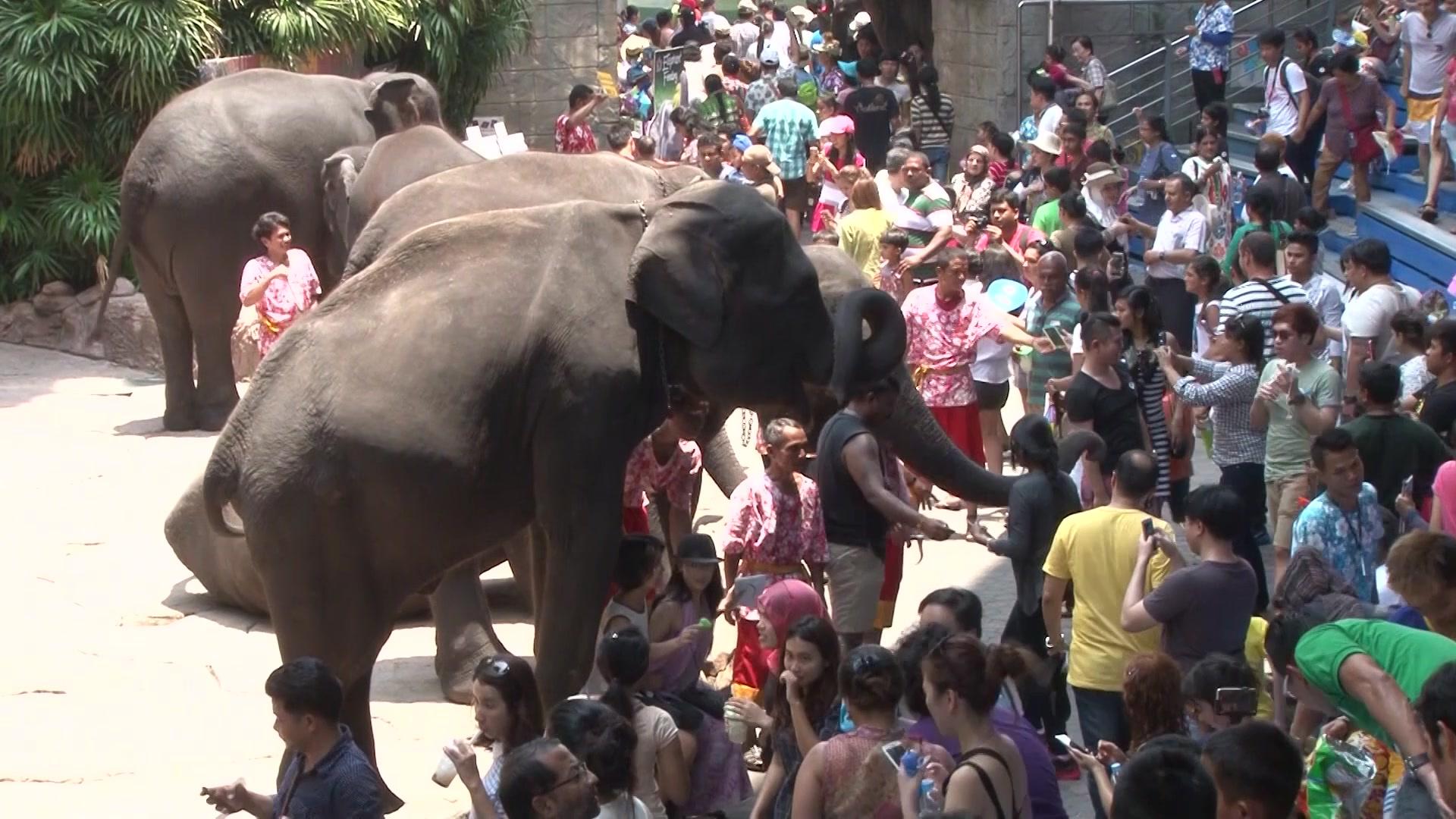 Мировая прогулка: Таиланд (Бангкок) - Серия 6