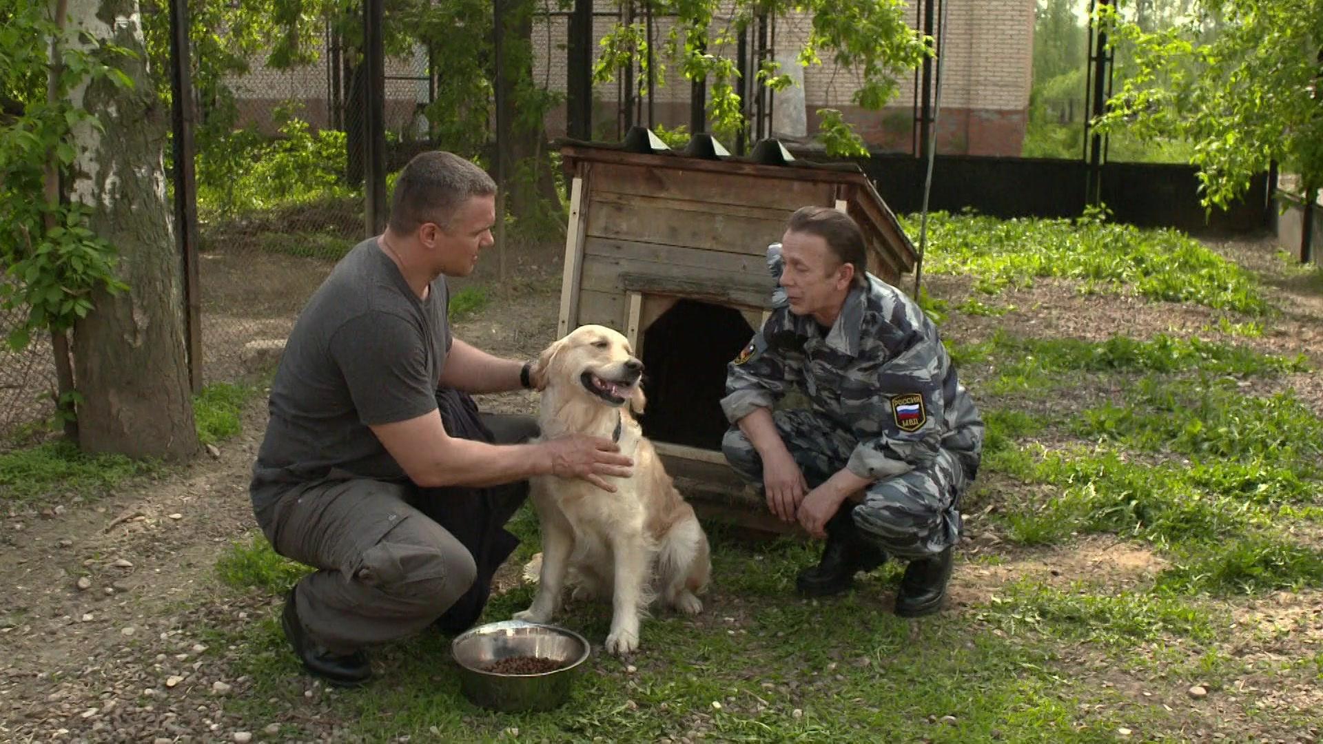 Собачья работа - Серия 1