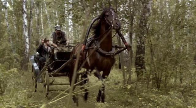 В лесах и на горах - Серия 2