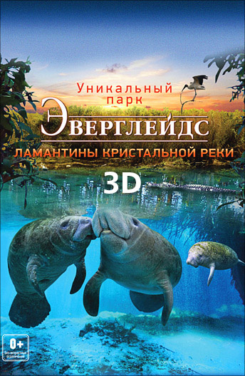 Эверглейдс 3D: Ламантины Кристальной реки