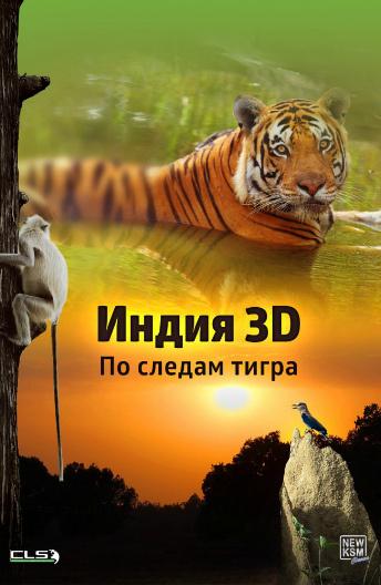 Индия 3D: По следам тигра