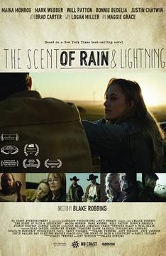 Запах дождя и молнии