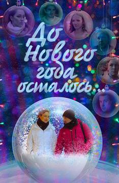 До Нового года осталось…