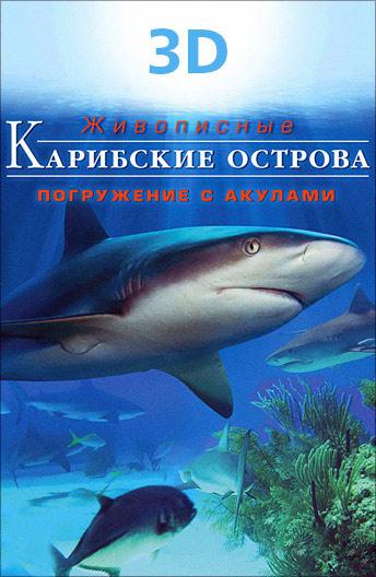 Карибские острова 3D: Погружение с акулами