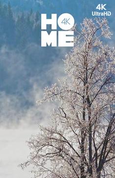[4k] Зима