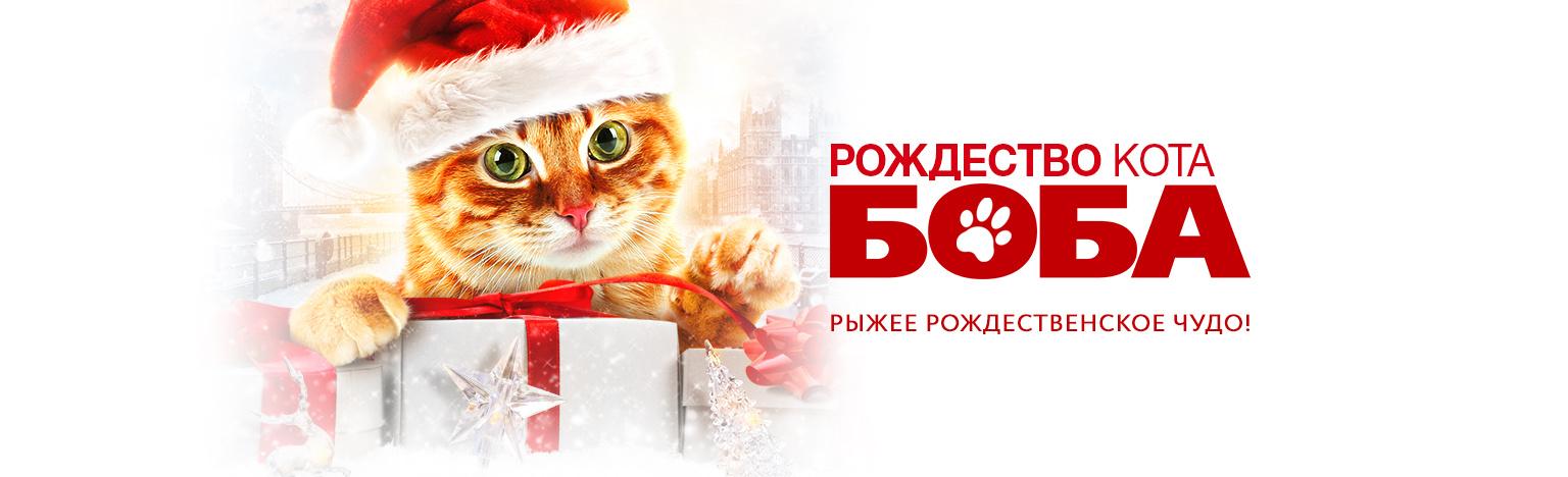 Фильм Рождество кота Боба (2020) описание, содержание, трейлеры и многое другое о фильме