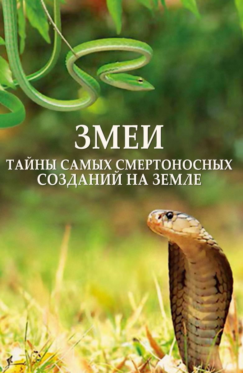 Змеи. Тайны самых смертоносных созданий на земле