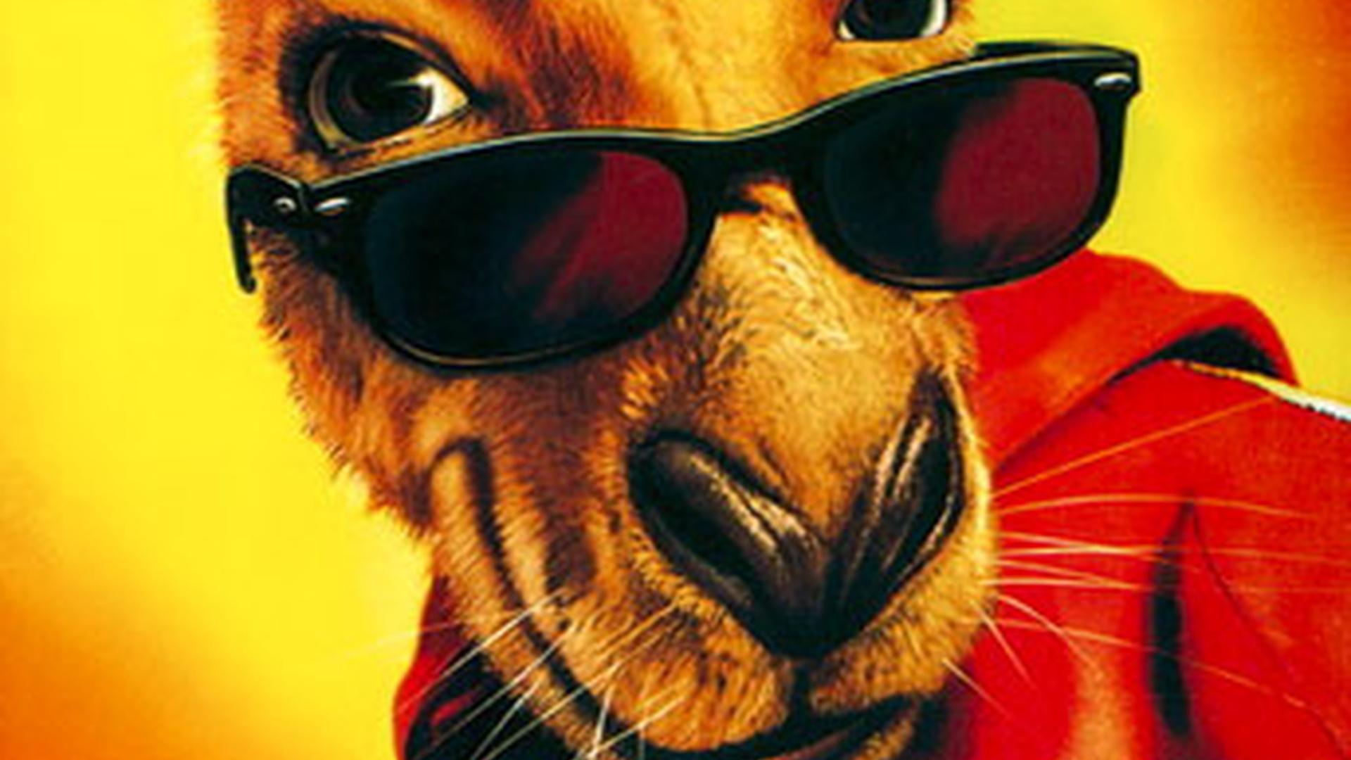 фильм про кенгуру джекпот в хорошем качестве