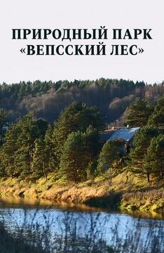 Природный парк «Вепсский лес»