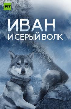 Иван и серый волк